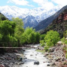 Photo-Ourika-Valley-Day-Trip-From-Marrakech-1